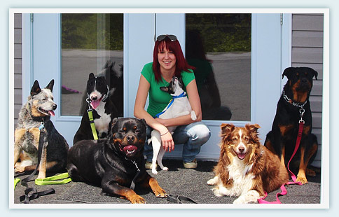 Terra Nova Kennels Obedience Training Services